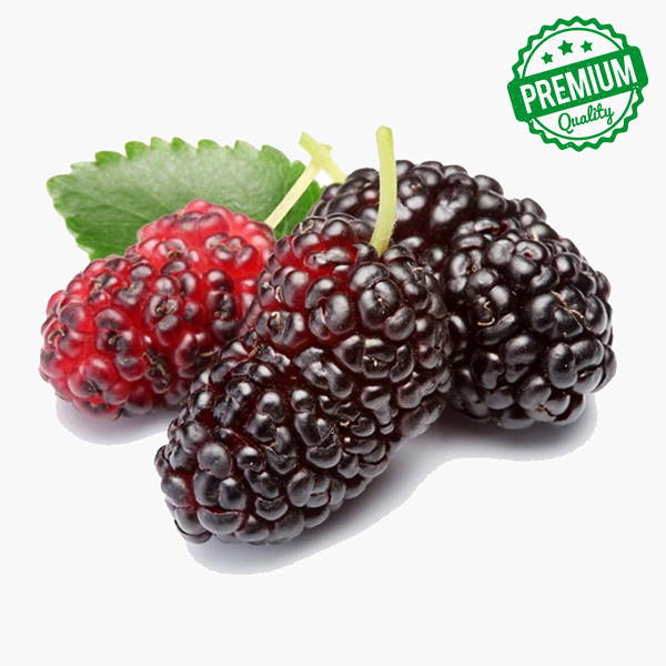 Mulberry Per Kg (Shahtoot)